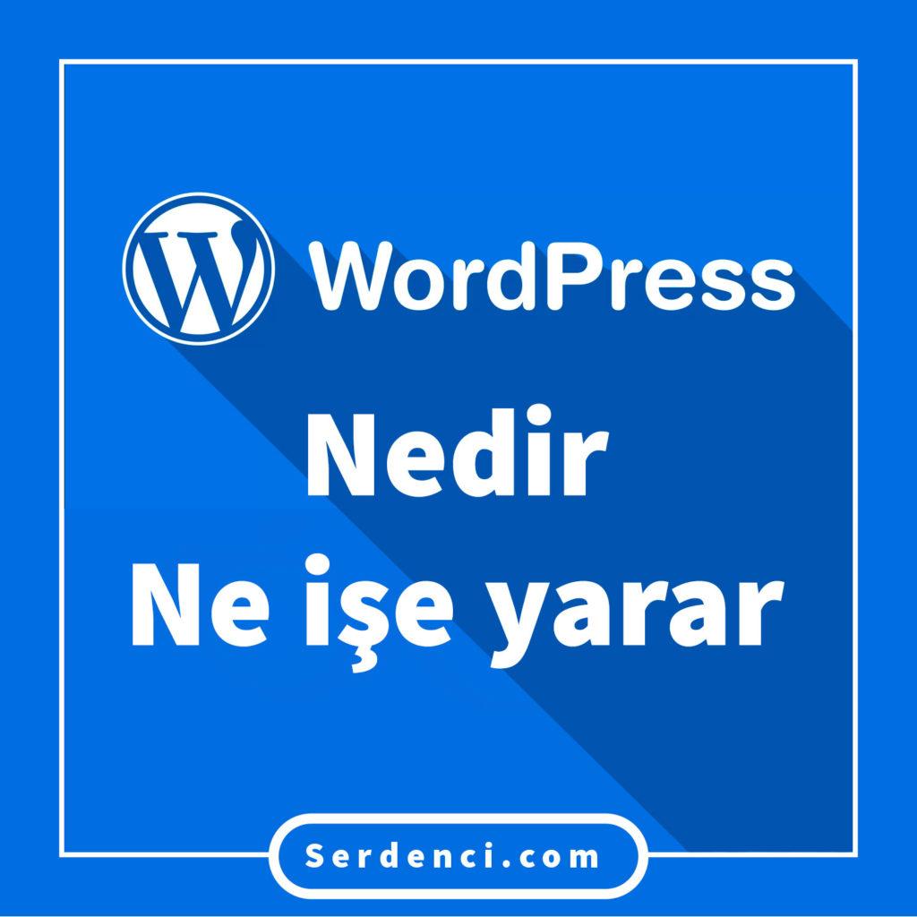 WordPress Nedir Ne İşe Yarar?